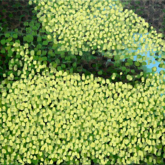 "Dragonfly Hunter Acrylic on Canvas 24"" x 24"" x 1.5"""